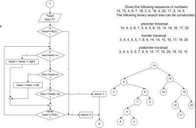 Tree_Search _landscape.jpg